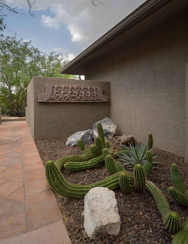 Sprawling Cactus