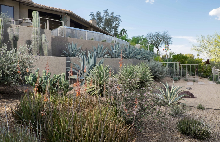 Terraced Plantings